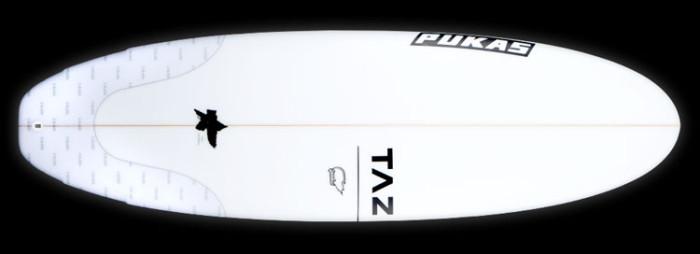 TAZ Speedball surfboardr eview