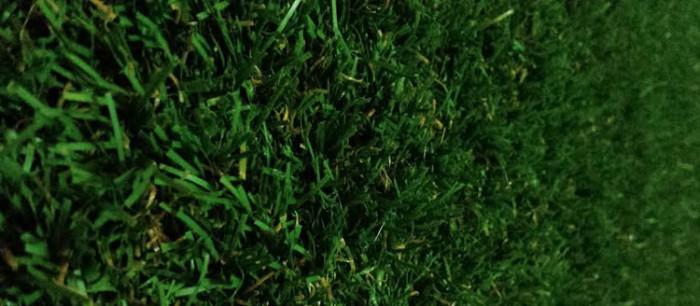 Grass surf mat