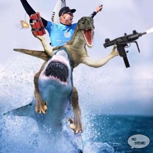 Fanning shark meme