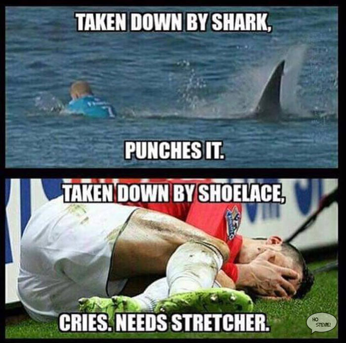 Funny meme of Mick Fanning
