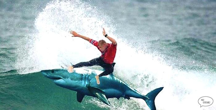 Mick Fanning riding shark