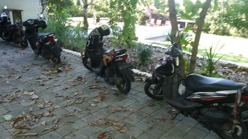 Bali scooter rentals